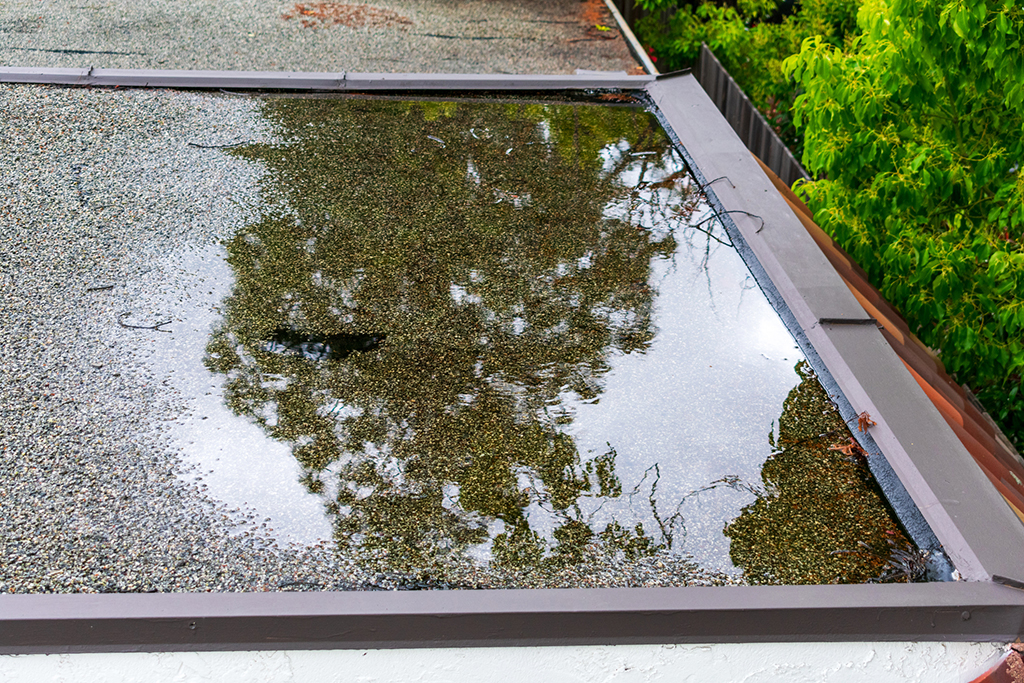 5-Most-Common-Commercial-Roofing-Problems-and-Their-Solutions-_-Dallas,-TX